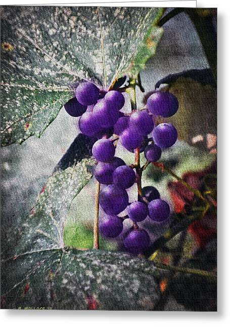 Concord Grapes Digital Greeting Cards - Purple Grapes - Oil Effect Greeting Card by Brian Wallace