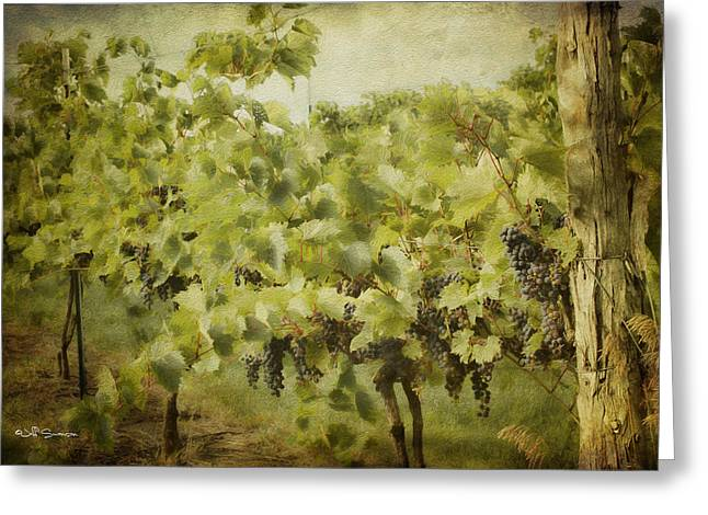 Silver Hills Winery Greeting Cards - Purple Grapes on the Vine Greeting Card by Jeff Swanson