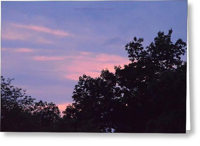 Hues Of Purple Greeting Cards - Purple Haze Greeting Card by Sonali Gangane