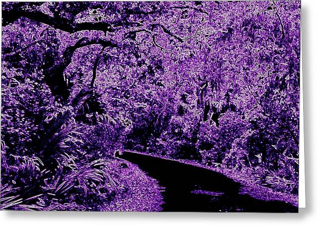 Cedar Key Photographs Greeting Cards - Purple Haze Greeting Card by Wanda Lane