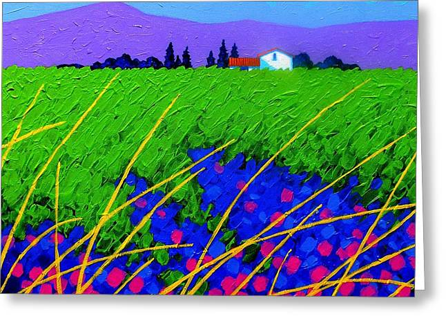 Provence Greeting Cards - Purple Hills Greeting Card by John  Nolan