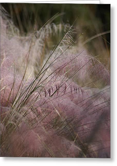 Purple In Bloom Greeting Card by Patricia Twardzik