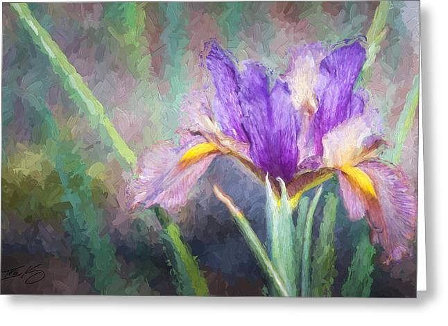 Ike Krieger Greeting Cards - Purple Iris in the Early Spring Greeting Card by Ike Krieger