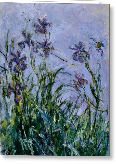 Purples Greeting Cards - Purple Irises Greeting Card by Claude Monet