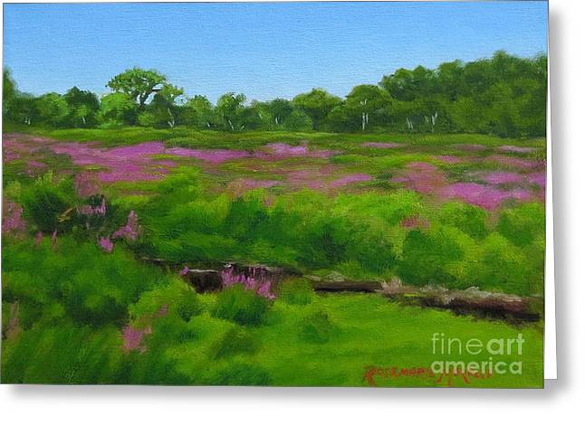 Purple Loosestrife Medfield Ma Greeting Card by Rosemarie Morelli