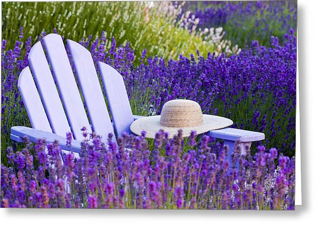 Sun Hat Greeting Cards - Purple Love Greeting Card by Eggers   Photography