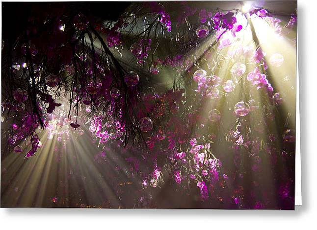 Purple Magic Greeting Card by Nadya Ost