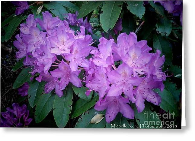 Purple Majesty Greeting Card by Michelle Rene Goodhew