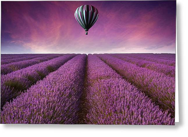 Pasttime Greeting Cards - Purple Greeting Card by Matthew Gibson