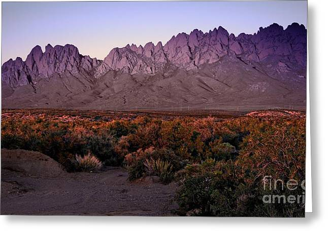 Las Cruces Digital Art Greeting Cards - Purple Mountain Majesties Greeting Card by Barbara Chichester