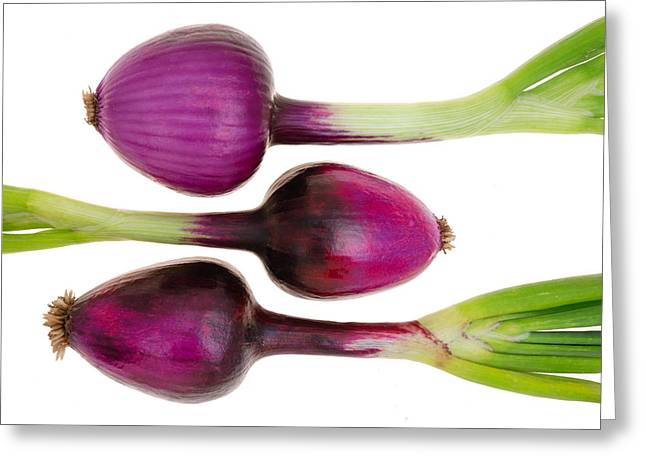 Onion Greeting Cards - Purple Onions  Greeting Card by Jim Hughes