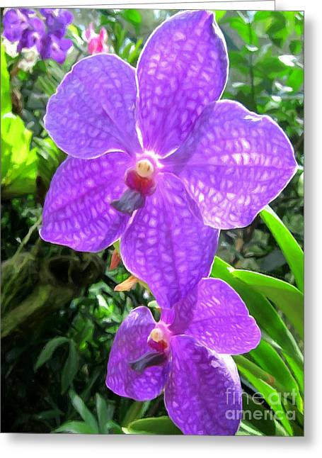 Golden Pink Orchid Greeting Cards - Purple orchid flower Greeting Card by Lanjee Chee