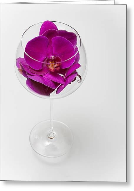 Phalenopsis Greeting Cards - Purple Phalenopsis in a Glass  79 Greeting Card by W Chris Fooshee