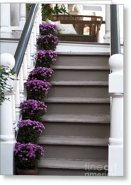 Purple Plants Greeting Card by John Rizzuto