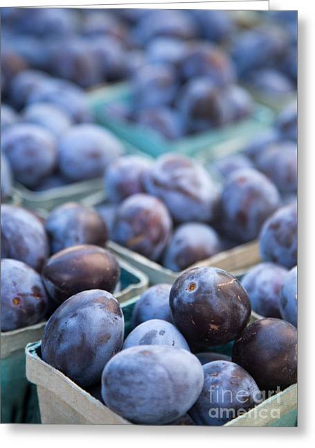 Plums Greeting Cards - Purple Plums Greeting Card by Rebecca Cozart
