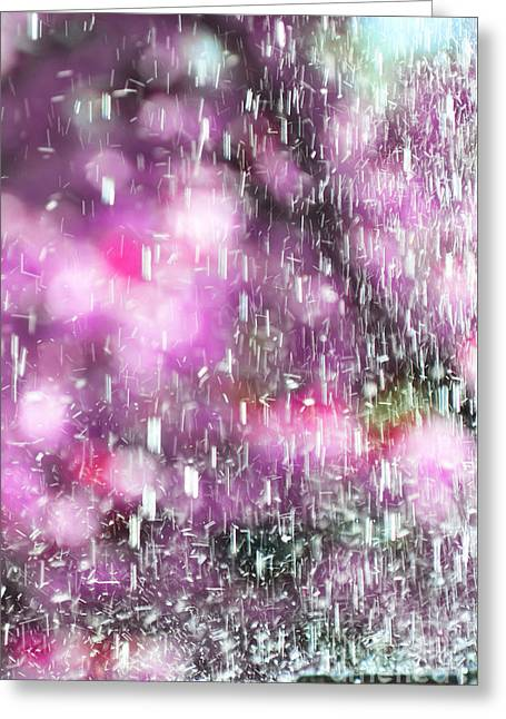 Pink And Purple Greeting Cards - PURPLE RAIN  - Rain and Flowers Abstract Photography Art  Greeting Card by ArtyZen Studios - ArtyZen Home