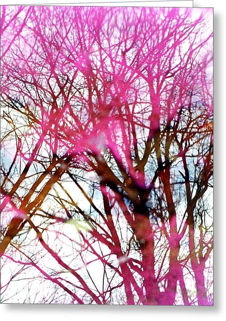 Trees Reflecting In Water Greeting Cards - Purple Reflection 35mm Film Greeting Card by Dave Morgan