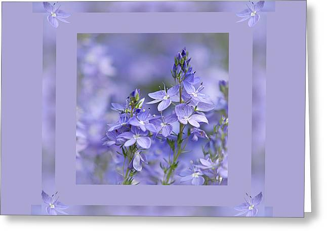 Soft Purple Greeting Cards - Purple Ribbons Greeting Card by Gill Billington