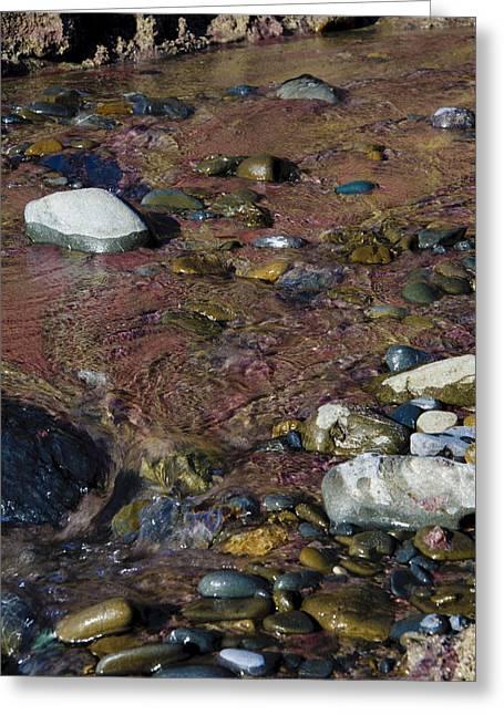 Big Sur Beach Greeting Cards - Purple Sand Of Pheiffer Beach Greeting Card by Patricia Sanders