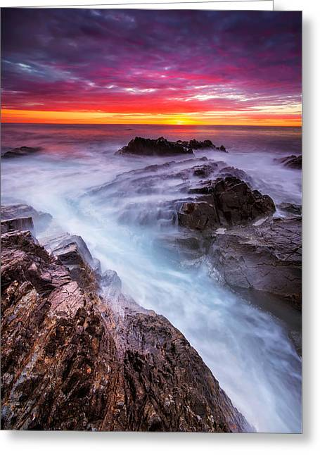 Water Flowing Greeting Cards - Purple sky Greeting Card by Evgeni Ivanov
