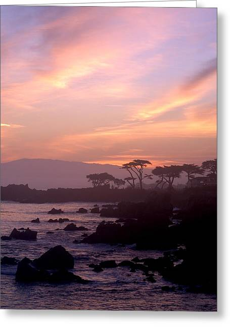 Sunrise Over California Greeting Cards - Purple Sunrise of Pacific Grove Greeting Card by Barbara Snyder