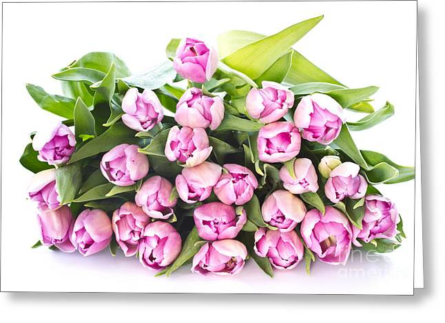 Purple Tulips Greeting Card by Boon Mee