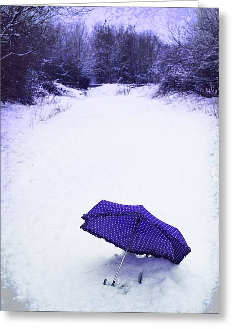 Winter Photos Greeting Cards - Purple Umbrella Greeting Card by Amanda And Christopher Elwell