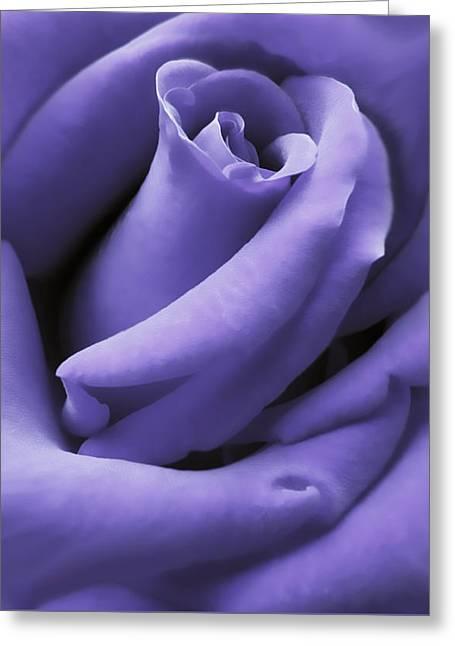 Purple Velvet Rose Flower Greeting Card by Jennie Marie Schell
