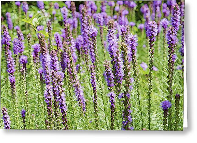 Cultivation Paintings Greeting Cards - Purple Wild Flowers3 Greeting Card by Lanjee Chee