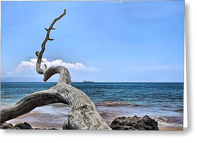 Djphoto Greeting Cards - Maluaka Beach Greeting Card by DJ Florek