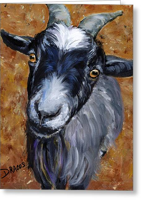 Pygmy Goat Looking Up Greeting Card by Dottie Dracos