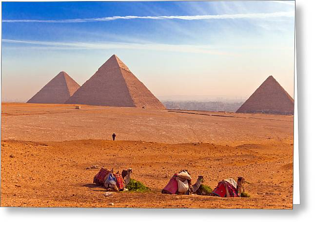 Northern Africa Greeting Cards - Pyramids and Camels Greeting Card by Matthew Bamberg