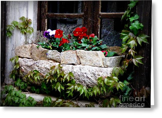 Lainie Wrightson Greeting Cards - Quaint Stone Planter Greeting Card by Lainie Wrightson
