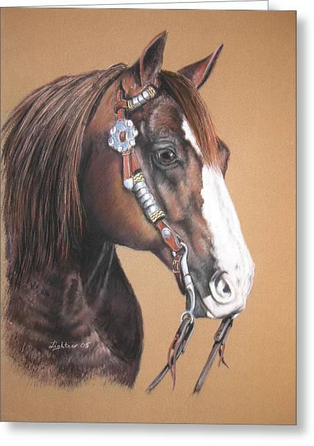Quarter Horses Drawings Greeting Cards - Quarter Horse Greeting Card by Barbara Lightner