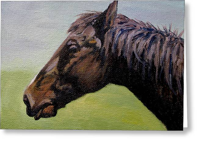 Quarter Horses Greeting Cards - Quarter Horse Greeting Card by Daniel Fishback