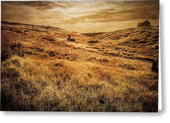 Ramshackle Greeting Cards - Quartz Mountain 27 Greeting Card by YoPedro