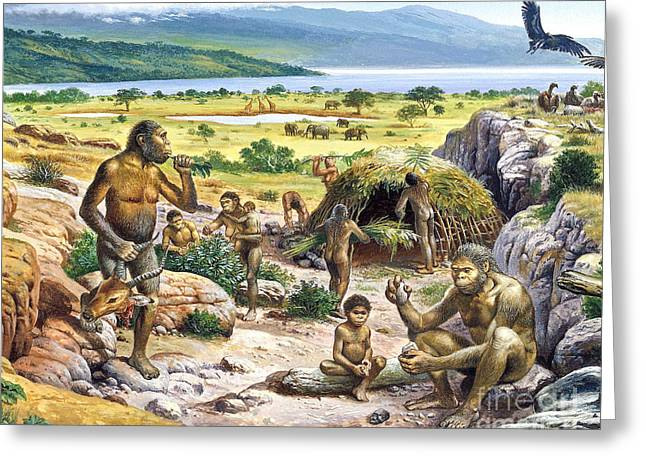 Origins Of Life Greeting Cards - Quaternary Period Landscape Greeting Card by Publiphoto