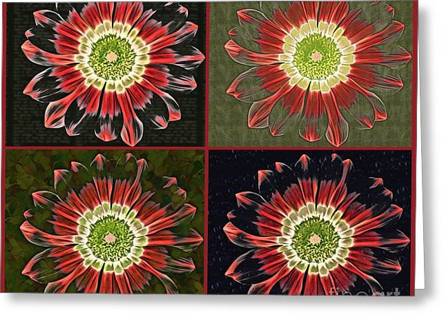 Division Greeting Cards - Quatro Floral - 0102cba Greeting Card by Variance Collections