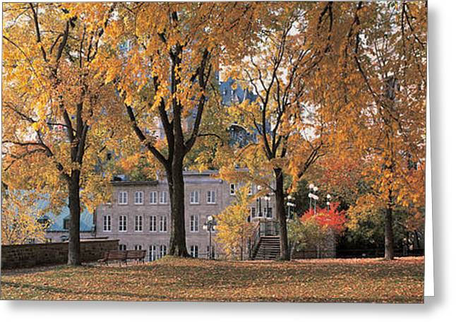Fallen Leaf Greeting Cards - Quebec City Quebec Canada Greeting Card by Panoramic Images