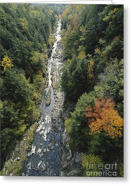 Quechee Greeting Cards - Quechee Gorge, Vermont Greeting Card by Gregory G. Dimijian, M.D.
