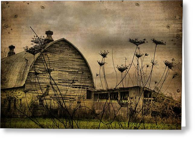 Old Barns Greeting Cards - Queen Annes View Barn Collage Greeting Card by Gothicolors Donna Snyder