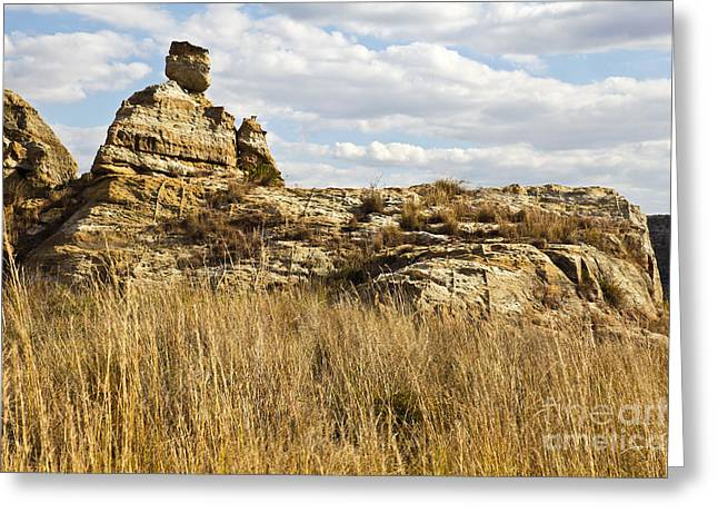 Geology Greeting Cards - Queen of Isalo  Madagascar Greeting Card by Liz Leyden