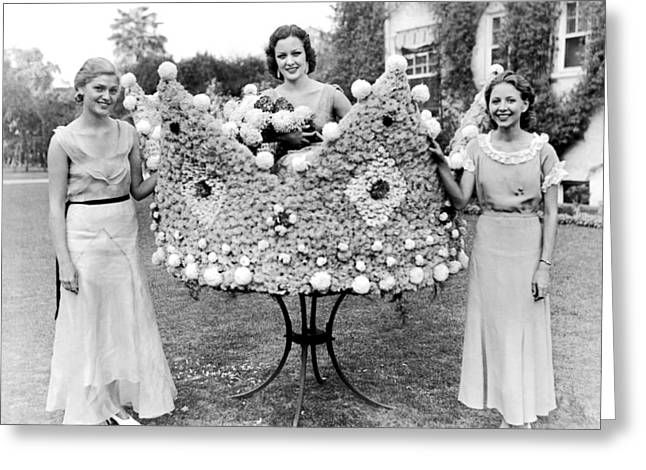 Queen Of The Flower Show Greeting Card by Underwood Archives