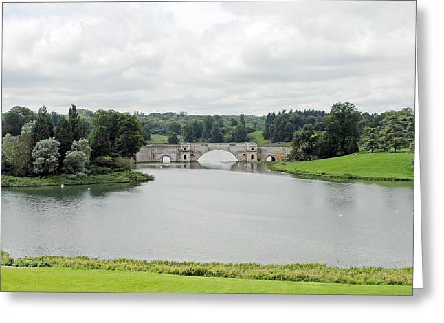 Duchess Greeting Cards - Queen Pool Blenheim Greeting Card by Tony Murtagh