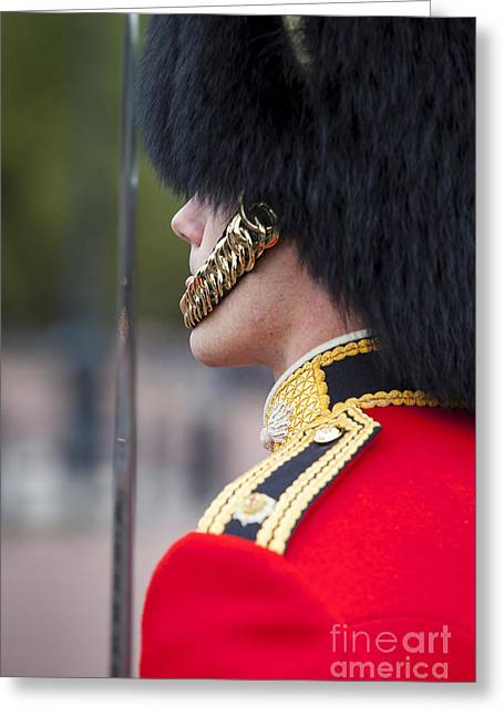 Attention Greeting Cards - Queens Guard Greeting Card by Brian Jannsen
