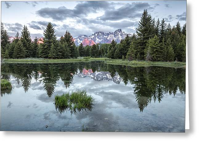 Quiet Beginnings Greeting Card by Jon Glaser