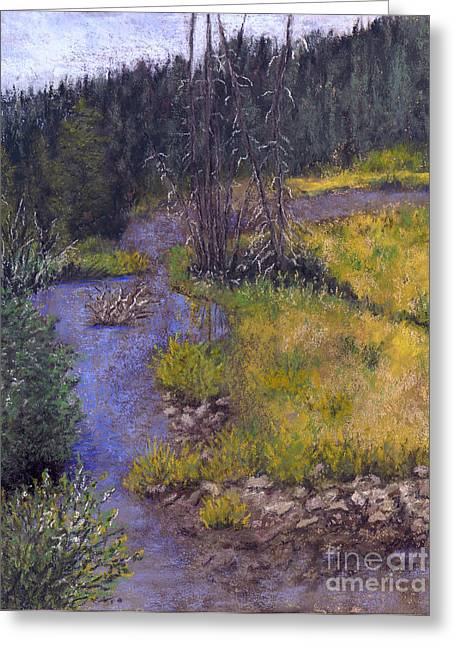 Creek Pastels Greeting Cards - Quiet Creek Greeting Card by Ginny Neece