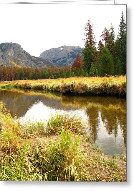 Mountains Glass Greeting Cards - Quiet Meadow 1 Greeting Card by Jacqueline Russell