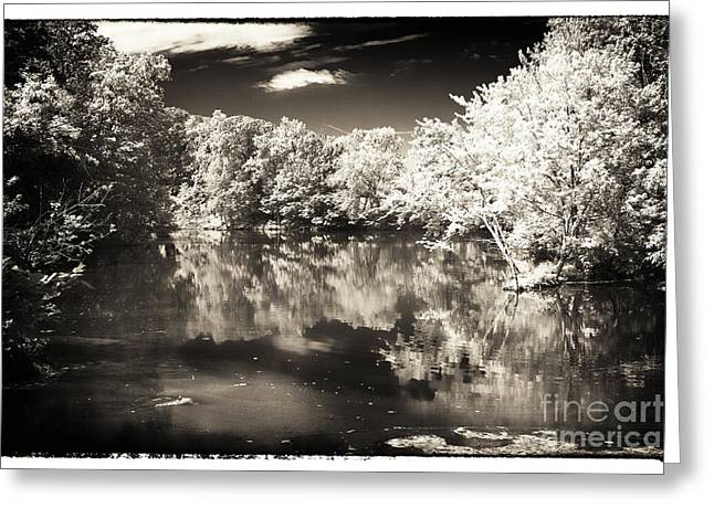 Quiet on the Pond Greeting Card by John Rizzuto