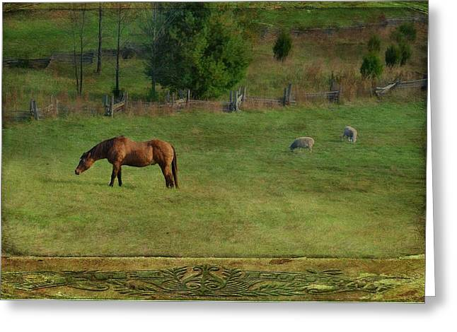 Soft Light Digital Art Greeting Cards - Quiet Pastures Greeting Card by Jan Amiss Photography